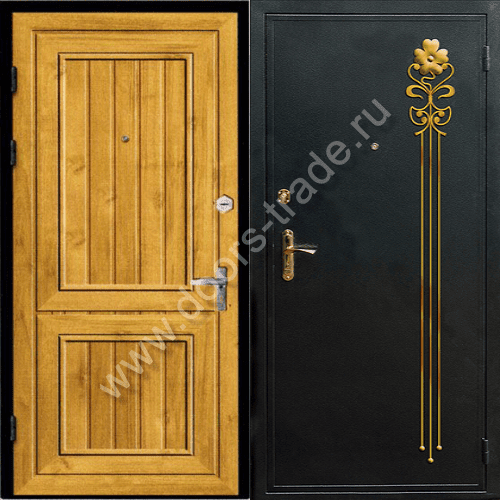 входные двери с порошковым покрасом